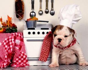 Chef Bulli copy